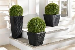 Pflanztöpfe und Vasen