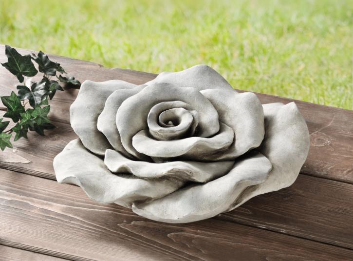 Deko-Rose 'Steinblüte'